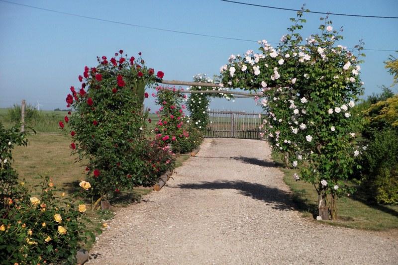 Le jardin des 4 saisons bazoches les gallerandes for Jardin 4 saisons